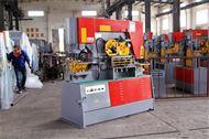 东强重工-Q35Y-20-联合液压冲剪机