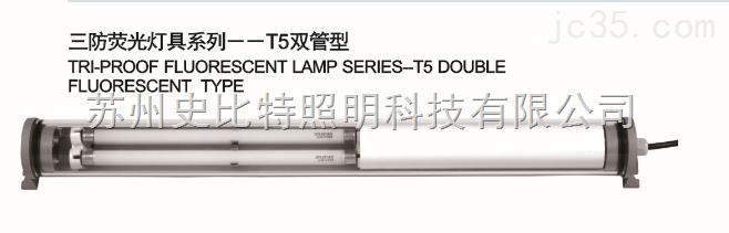 EXT5F-DC2416E-三防荧光灯
