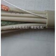 国标SYV22-75-17铠装同轴电缆